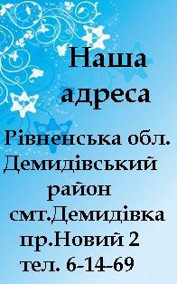 Демидівський район
